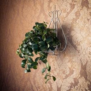 Настенная подставка под цветок