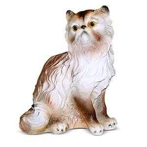 Персидская кошка F01209