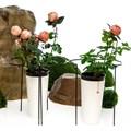 Опора для растений 57-906 - фото 56185