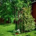 Шпалера Тюльпаны - фото 56416